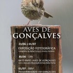 Cartaz do evento Aves de Gonçalves