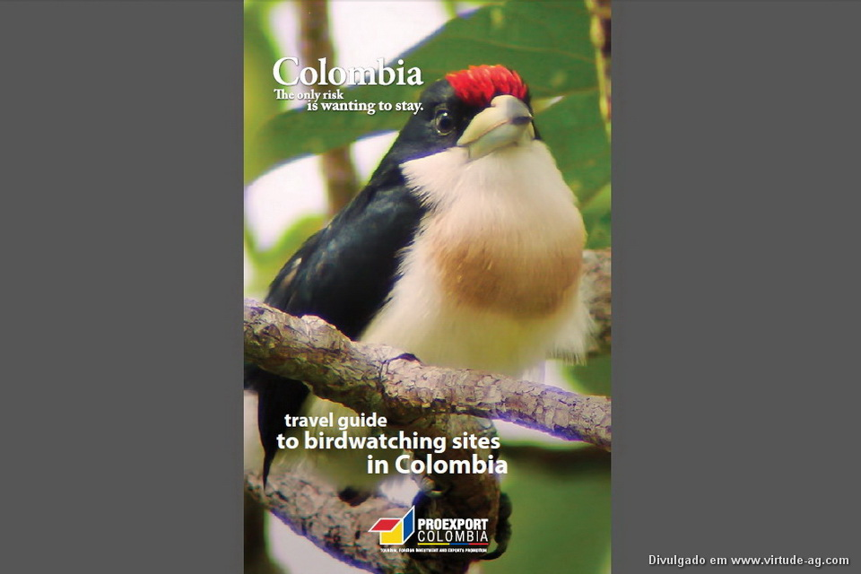 Guide-birdwatching_Colombia