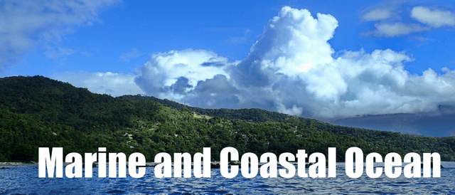 Marine and Coastal Ocean biome
