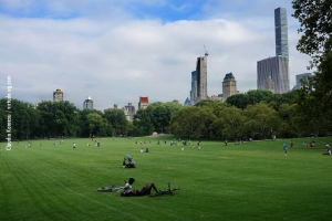 Central-Park_july-nature_02