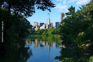 Central-Park_july-nature_04