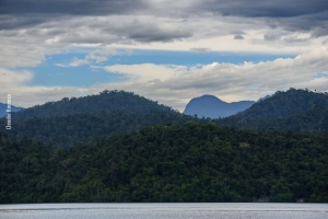 Fishwatching_Paraty_nov17_41