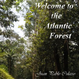 Paisagem sonora: Welcome to the Atlantic Forest,  jun/12. Por Juan Pablo Culasso.
