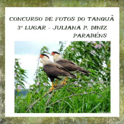 Tanqua_3o-lugar_Juliana-Diniz